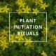 Plant Initiation Rituals by Annie B Kay Pinterest