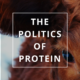 The Politics of Protein by Annie B Kay
