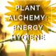 Plant Alchemy: Energy Hygiene by Annie B Kay - anniebkay.com