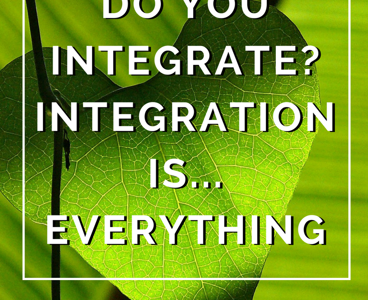 Do You Integrate? Integration is...Everything by Annie B Kay - anniebkay.com