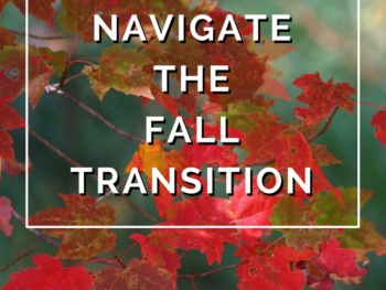 Navigate the Fall Transition by Annie B Kay - anniebkay.com